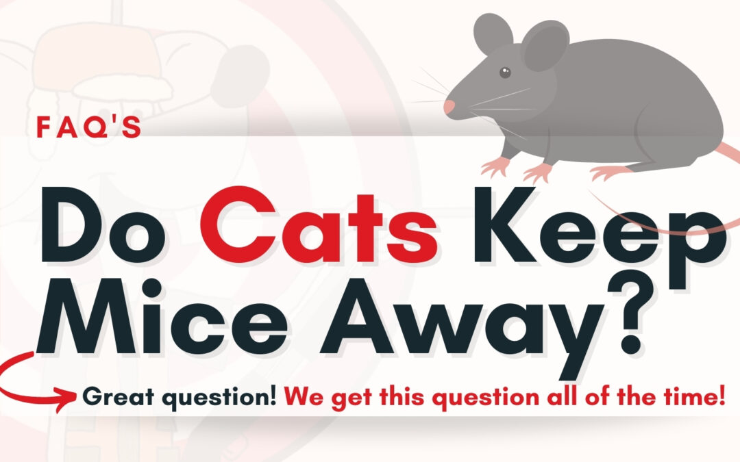 Do Cats Keep Mice Away?