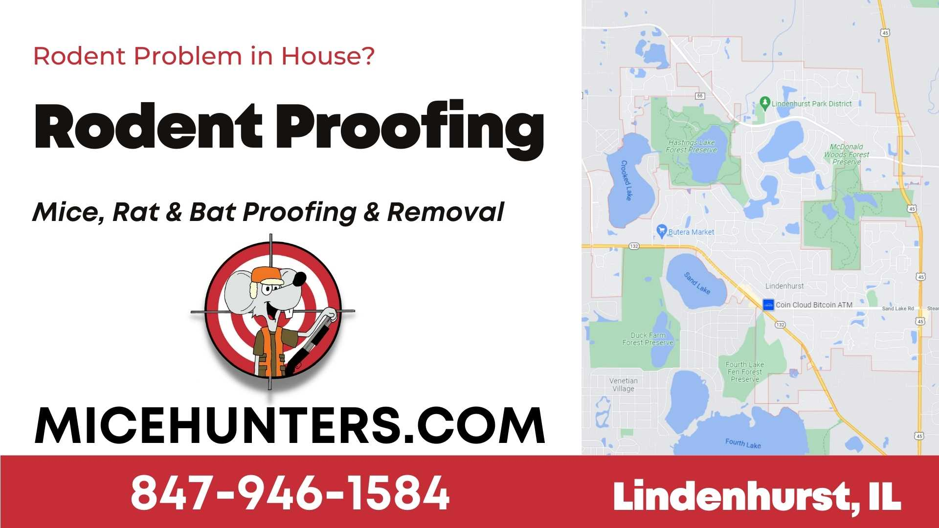 Lindenhurst Rodent and Mice Proofing Exterminator Near Me