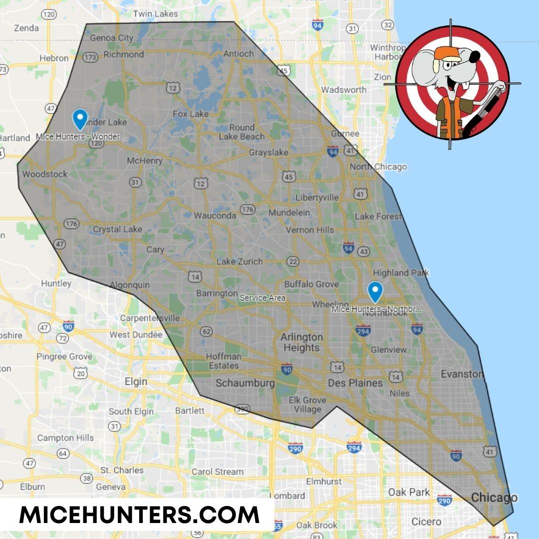 Mice Extermination Service Area & Locations around Chicago