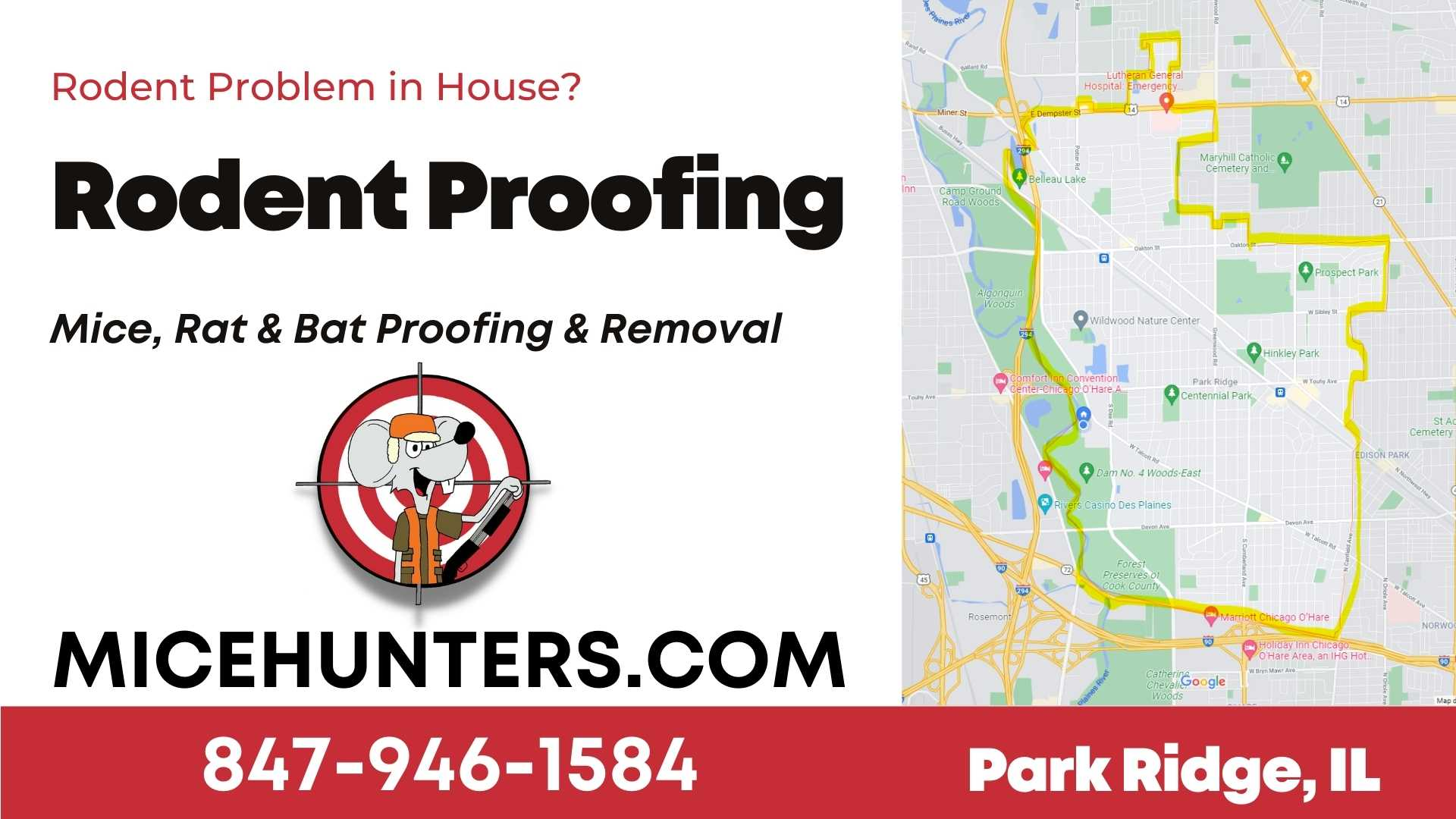 Park Ridge Rodent and Mice Proofing Exterminator near me