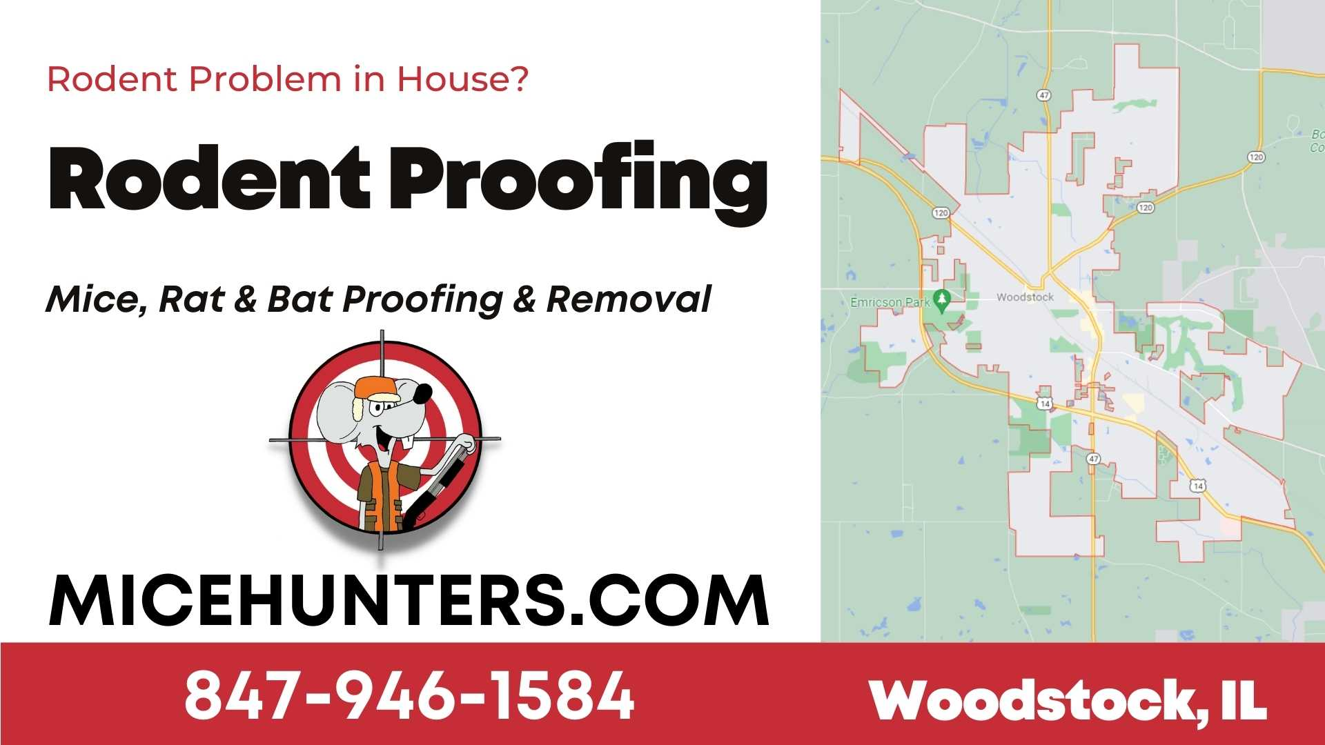 Woodstock Rodent and Mice Proofing Exterminator near me